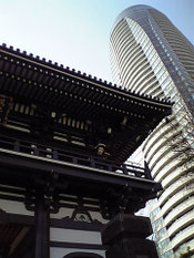 Seishoji_and_forest_tower